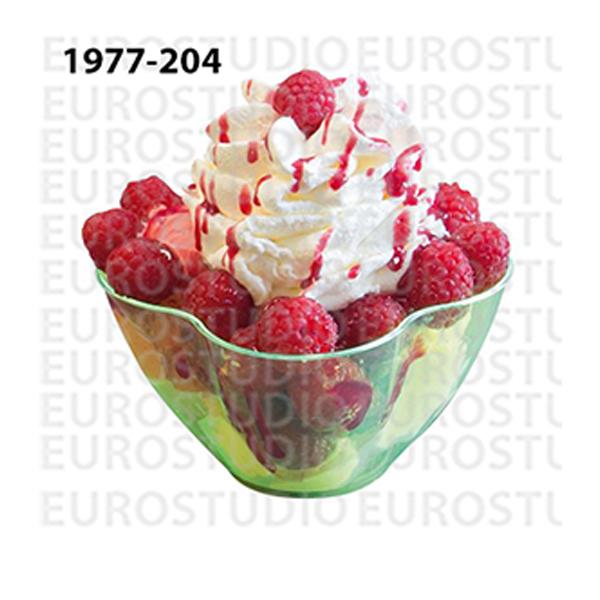 1977-204