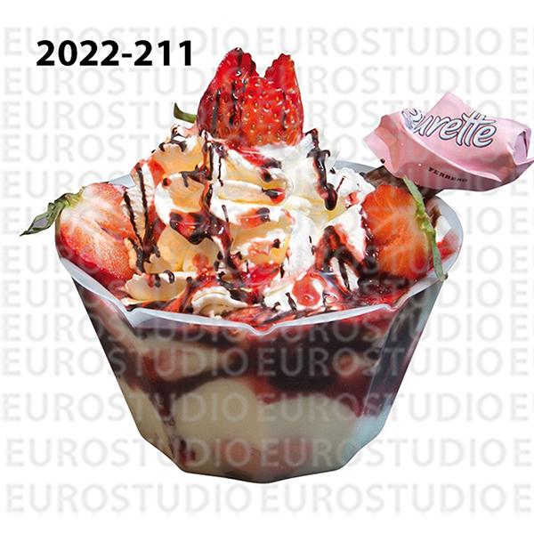 2022-211